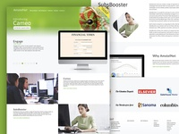 AmstelNet, website redesign