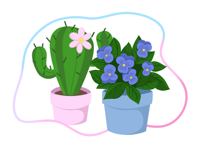 Beautiful colours in pot children beautiful pot cactus violet flowers flower sketch design illustration