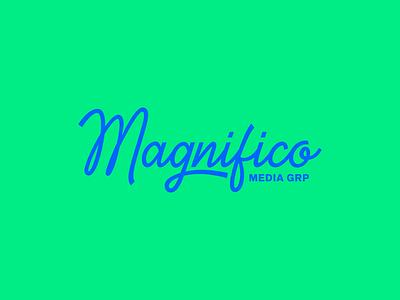 Magnifico Script school script blue green identity typography type branding brand logo