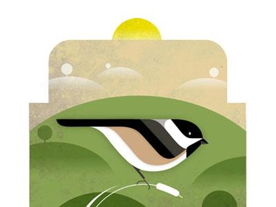 Chickadee illustration bird chickadee