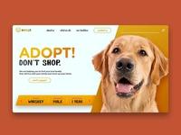 Adogt Website Design