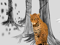 Jaguar Illustration