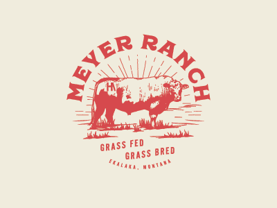 Ranch Logo montana western agriculture bull type logo ranch