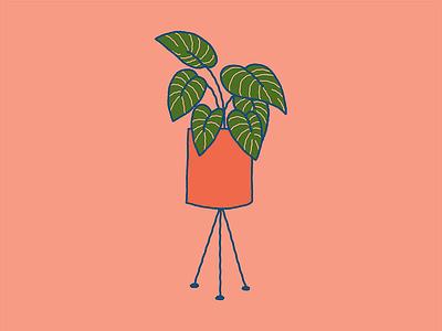 Plant Friend wobbles illustration planter ferm plantfriend plant pink stripy calathea
