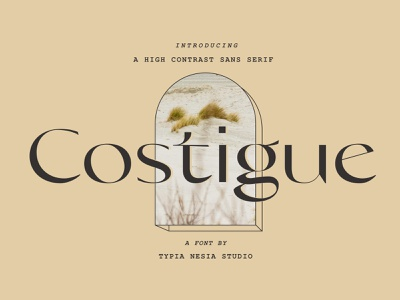 Costigue - Luxury Sans Font cover typography serif calligraphy elegant font resources display lettering art sans serif typeface sans serif fonts design logo lettering fonts font sans font serif font sans serif font sans serif luxury