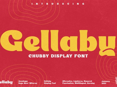 Gellaby - Chubby Display Font font headline magazine logos posters logo product label branding poster font design design sans serif fonts sans serif font sans serif serif fonts display fonts display font serif font serif bold
