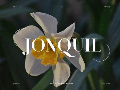 Jonquil - Classic & Modern Serif sans serif font fonts sans serif classic serif font display font font design font resources classy font classy design conquil font modern serif font serif font serif modern fonts modern font modern classic font classic