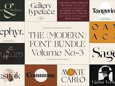 The Modern Font Bundle Vol.3 display fonts display font stylish fonts trendy fonts chic fonts luxury fonts elegant fonts modern fonts advertising logo branding typography typeface lettering fonts font collections font resources font collection font bundle font
