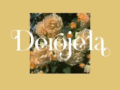 Derojela Display Font display font stylish magazine fashion display advertising branding logo lettering typography typeface minimalist unique serif sans serif elegant modern classy fonts font
