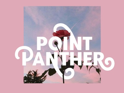 Point Panther Display Font ( 8 Bold Fonts ) display font stylish magazine fashion display advertising branding logo lettering typography typeface minimalist unique serif sans serif elegant modern classy fonts font