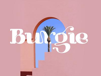 Burgie - Display Font branding logo lettering typography typeface minimalist unique serif sans serif elegant modern classy fonts ont display fonts display typeface display typography display type display font display