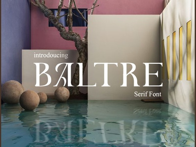 Baltre | Display Font luxury display font stylish magazine fashion display advertising branding logo lettering typography typeface minimalist unique serif sans serif elegant modern classy fonts