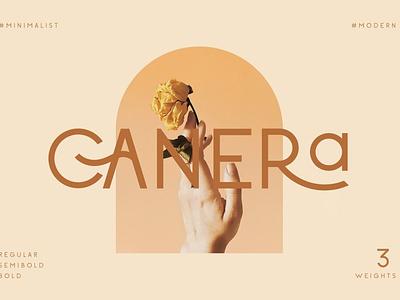 Canera - Simple Elegant Typeface luxury display font stylish magazine fashion display advertising branding logo lettering typography typeface minimalist unique serif sans serif elegant modern classy fonts