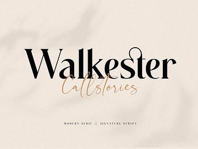 Walkester Font Duo minimal calligraphy luxury display font magazine fashion advertising branding logo lettering typography typeface minimalist unique serif sans serif elegant modern classy fonts