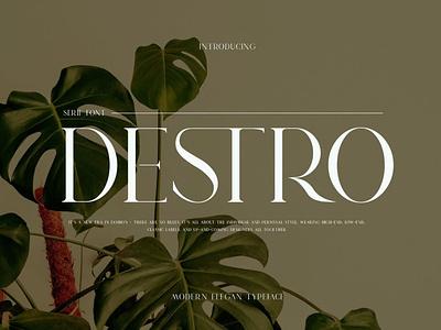 DESTRO Ligature Serif Font display font stylish magazine fashion display advertising branding logo lettering typography typeface minimalist unique serif sans serif elegant modern classy fonts font