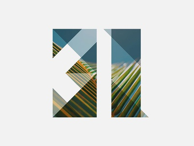 31 typography custom branding lettering tropical palm tree numbers numerals geometric 31