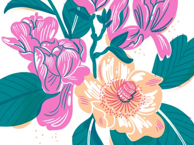 Magnolias Risograph peach pink bouquet risograph riso flowers floral illustration drawings drawing magnolia