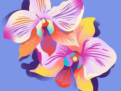Orchids tropical flower orchids illustration flower illustration bloom blossoms noise gradient tropical spot illustration pattern floral flowers orchids drawing texture jordan kay illustration
