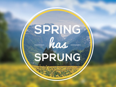 Spring has Sprung Badge Iterations badge spring badge spring season illustrator seasonal typography magnified glass promotionalcodes.com