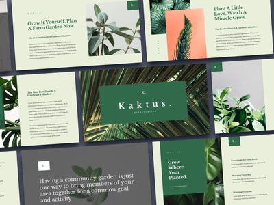 Kaktus Multipurpose Template template presentation powerpoint multipurpose template multipurpose keynote google slides web development web design website modern clean unique corporate company portfolio photography studio pitch deck colorful