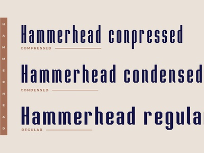 Hammerhead Typeface | Font professional font sans serif font clean font graphic design branding illustration typography type headfonts font typeface