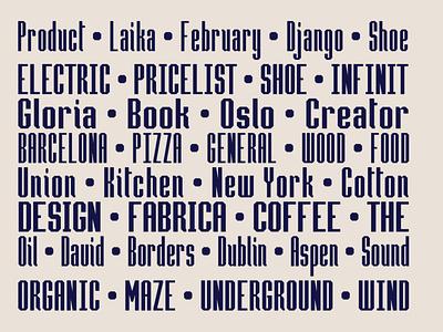 Hammerhead Typeface | Font professional san serif font clean font branding graphic design design typography type headfonts font typeface