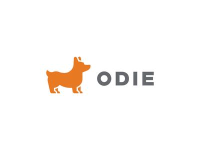 Odie brand identity corgi dog logo smart by design brand studio smart by design studio fintech dog icon corgi icon logo brand tieatie logo branding tieatie aiste designer startup