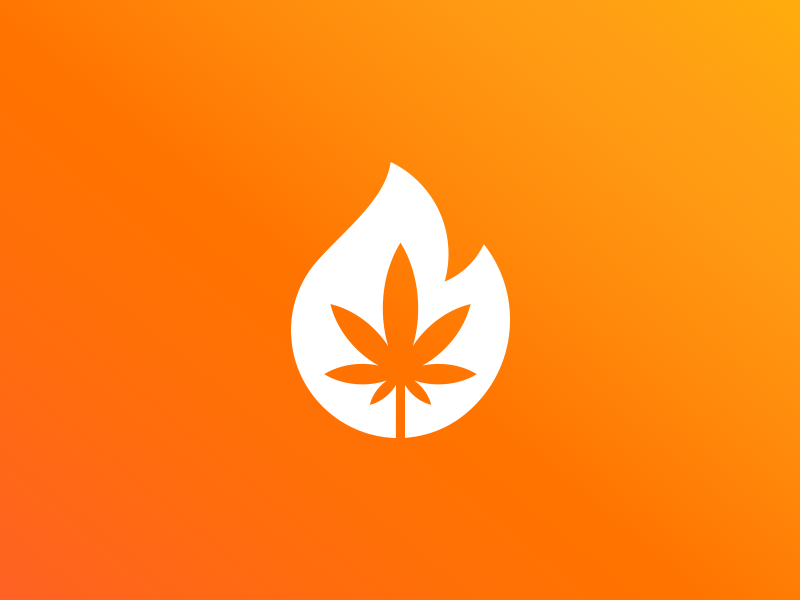 Fire! cannabis concept illustration logo design icon branding colors