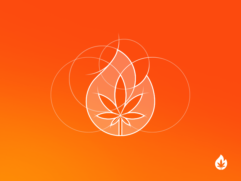 Fire! [ICON CONSTRUCTION] colors branding icon design logo illustration concept cannabis