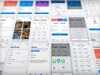 12306 App Revamp