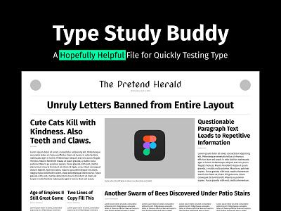 Type Study Buddy type study figma typography