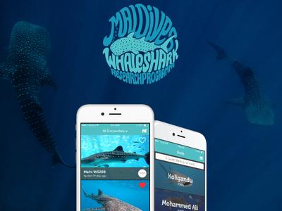 Maldives Whale Shark Research Programme App whale shark maldives shark whale app ios