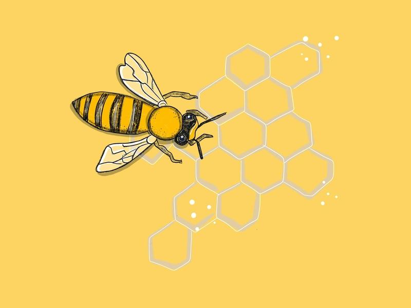 Life is Funny, Bees Make Honey yellow honeycomb bee honeybee illustration