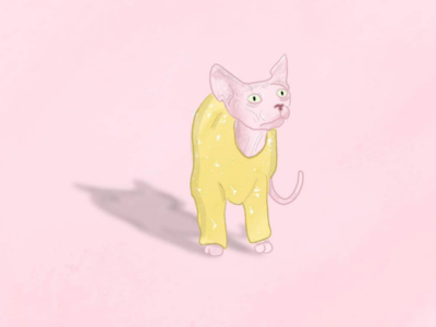 Hairless cat pink wrinkles petsketches catsweater cat hairlesscat