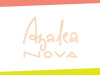 Azalea Nova. 1