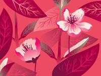 Gradients are baaaackkk - floral edition
