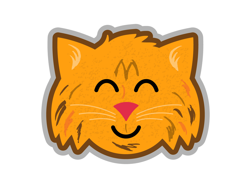 Maine Coon cats cat design cartoon animals illustrator cute illustration vector
