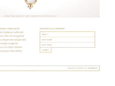 Subscription Form for a Jeweler monochrome subscribe form button gold outline