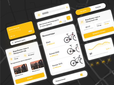 UI Components | Bike Rent App statistics rental bycicle design system library cards ui elements card design creative clean components styleguide ui kit graph chart analytics app ux minimal ui