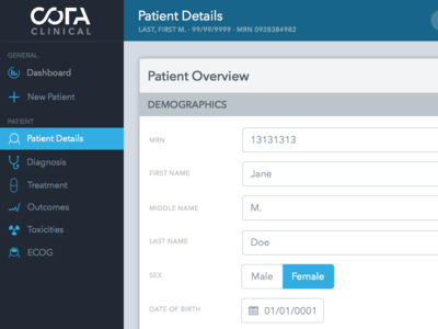 Patient Overview Iteration