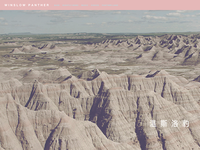 Winslow Panther Website