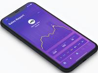 Exploration Sales Report iPhone X