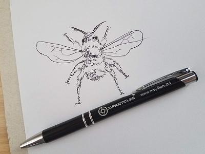 Bee Drawing sketch spelling bee bee ink pen illustration inktober