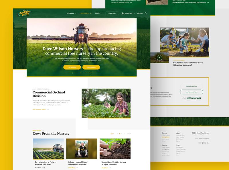 Dave Wilson Nursery california planting nursery trees tree tree nursery webdesign clean photoshop web responsive ux website ui design drawingart