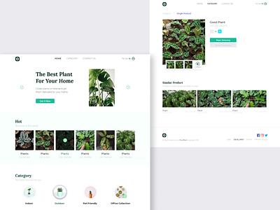 #Exploration - Plant shop ecommerce webdeveloper frontenddeveloper ux ui ui design webdesign userexperience userinterface