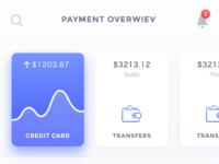 Payment overwiev real size
