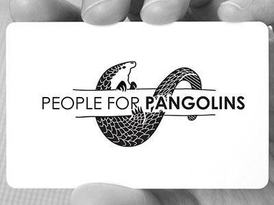 People For Pangolins - Logo and Identity illustrator logo brand design stationery pangolin identity brand