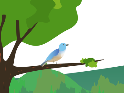 About to sing! flat greens tree songbird bird design motion graphics 2d animation minimal animation vector illustration