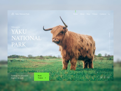 National Park yak animal park landing web design ux ui design