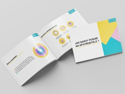 Brochure vector branding indesign brochure design color diagram icons presentation design
